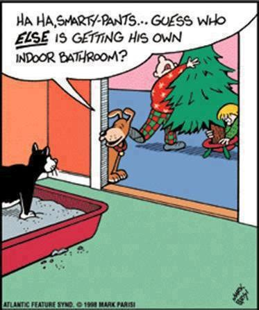 Adult Christmas Memes - funny christmas cartoon jokes memes pictures