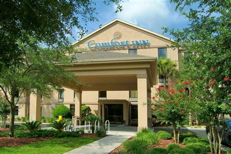 comfort inn university comfort inn university visit gainesville florida