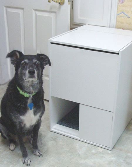 litter box to keep dogs out keep dogs out of the litter box modern cat magazine