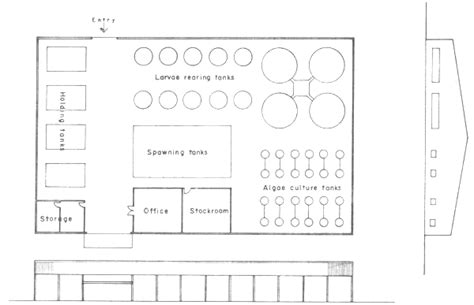 hatchery layout plan south china sea fisheries development and coordinating