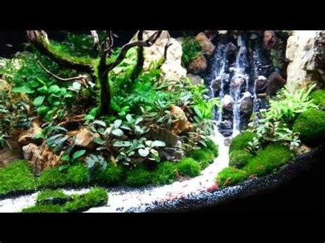 waterfall aquascape top 300 best aquascape aquariums youtube fish tanks