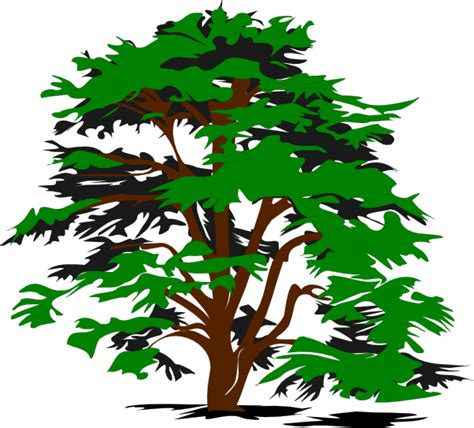 tree clipart simple tree clip at clker vector clip