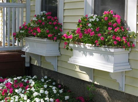 Best Window For Plants Best Plants For Window Boxes Best Flowers For Window Boxes