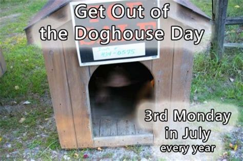getting out of the dog house celebrate national get out of the doghouse day in july nonstop celebrations