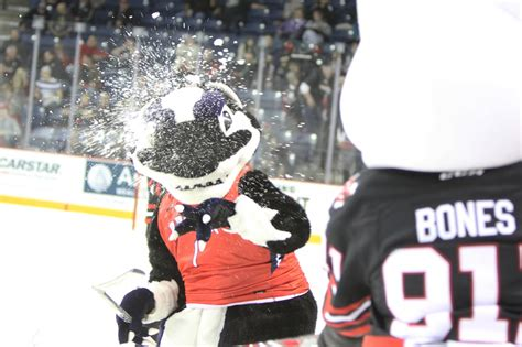 Brock Part Time Mba by Brock At The Niagara Icedogs The
