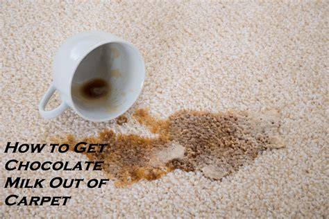 how to get black dye out of carpet how to get chocolate milk out of carpet homeaholic net