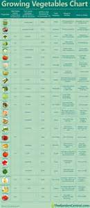 growing your own vegetables a chart to help year zero