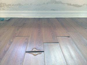 Hardwood Floor Water Damage How To Deal With Water Damage To Your Wood Floors Orange