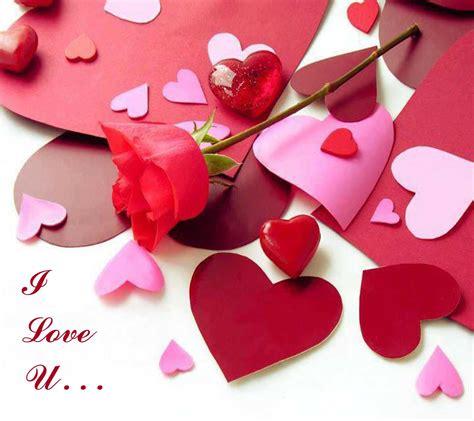 love  heart wallpaper image  hd  hd wallpaper