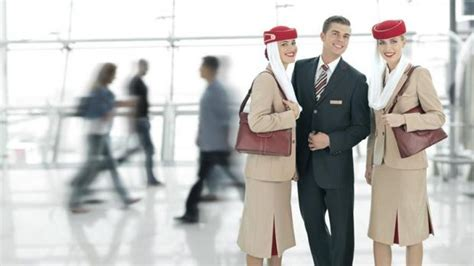 cabin crew information emirates cabin crew www imgkid the image kid