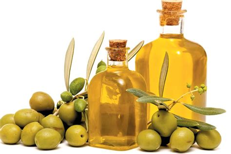 Jenis Dan Minyak Zaitun manfaat minyak zaitun