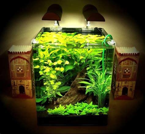Limited Aquarium Aquascape Filter Jebo 702 Hang On aquarium plants only aquarium plants only pets