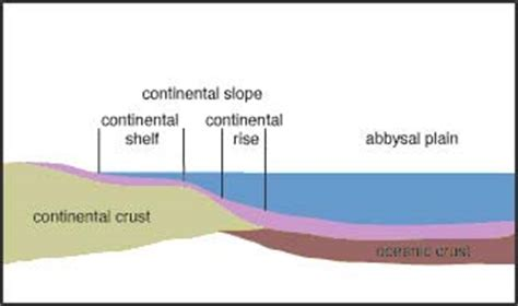 Continental Shelf Slope And Rise by Seafloor Topography Au Sidney