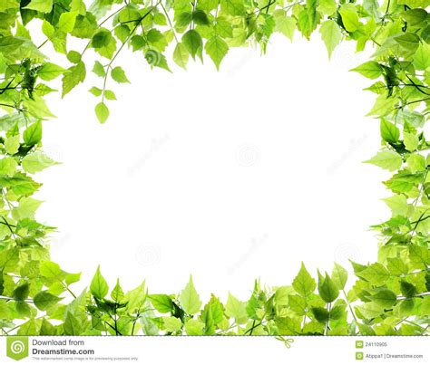 nature clip leaf nature clipart clipground