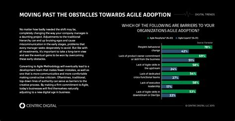 how traditional executives can adapt to agile methodology