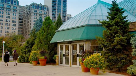 car rental lincoln park lincoln park conservatory in chicago illinois expedia ca