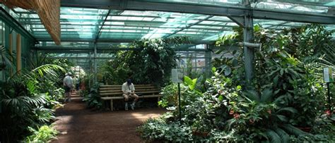 le jardin des papillons 2361933373 jardin des papillons papillons exotiques vivants 224 hunawihr en alsace