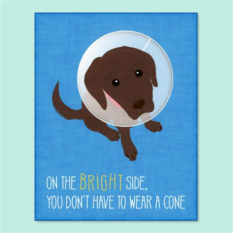 Funny Feel Better Meme - funny dog greeting card get well soon card funny get well