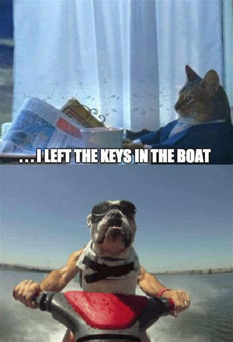 Cat Meme Boat - jimmyfungus com the kardashians every moment of every day