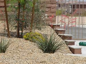 Fruit Trees In Las Vegas - keep your las vegas yard beautiful year round with the right plants