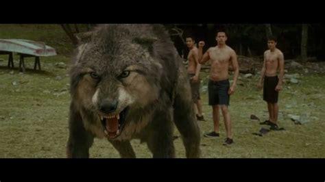Saga Of The Wolf lautner transformation wolf www pixshark