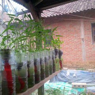 cara membuat zpt tanaman griya hidroponikku cara membuat tempat tanaman hidroponik