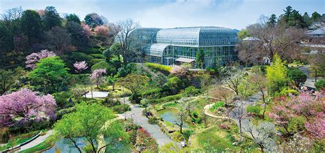 Japan Botanical Garden Kochi Prefectural Makino Botanical Garden Museum Things To Do Visit Kochi Japan