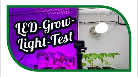 led pflanzenlen test led grow le test andere welten net