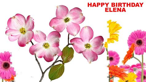 imagenes de happy birthday elena elena flowers happy birthday youtube