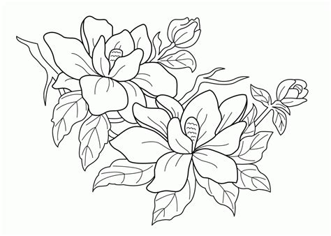 printable springtime flowers free printable spring flowers coloring pages az coloring