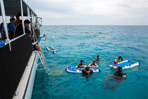 snorkeling in key west without a boat key west custom charters snorkeling scuba diving