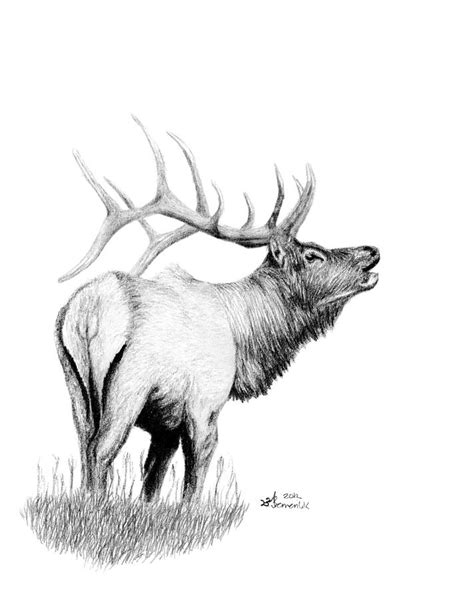 hunters target drawing by kayleigh semeniuk