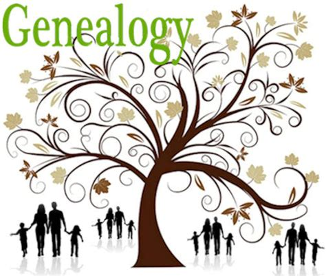 Family Birth Records Which Term Is Correct Familytree