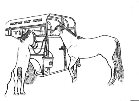 horse coloring pages for adults realistic horse coloring pages for adults coloring pages