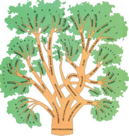 what is the history of trees the history of before prehistory c