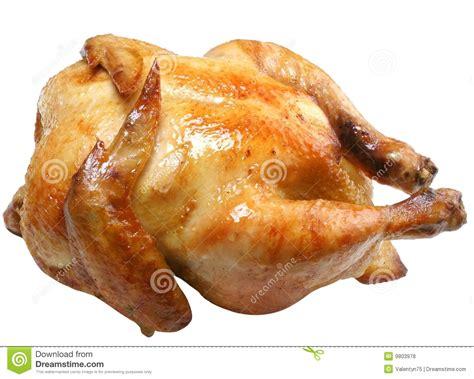 imagenes libres pollo pollo frito fotos de archivo libres de regal 237 as imagen