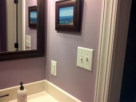ash violet by sherwin williams this is the color of my bedroom and it came out much more