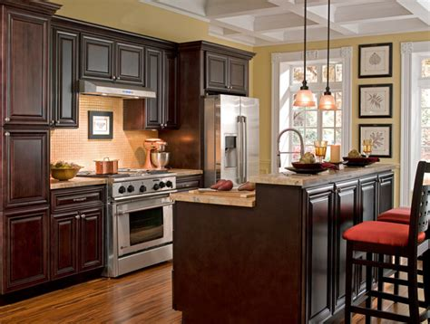 Chocolate Kitchen Cabinets Findley Myers Palm Chocolate Kitchen Cabinets Other Metro By Cabinets To Go
