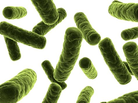 intossicazione alimentare sintomi intossicazioni alimentari cause sintomi diagnosi cura