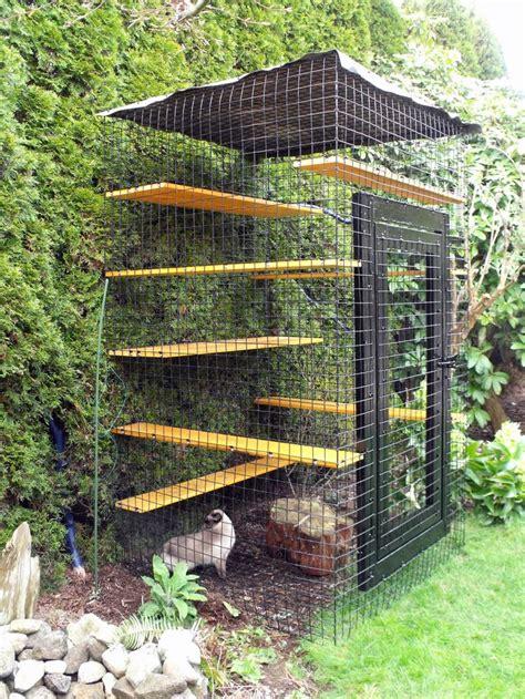 Outdoor cat enclosure beautiful world living environments www abeautifulwor pinterest