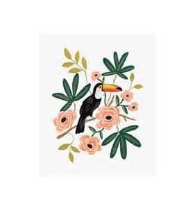Toucan Art Print By Rifle Paper Co Made In Usa