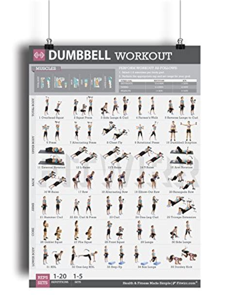 dumbbell exercises workout poster laminated strength