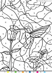 animal color number color number hummingbird coloring pages