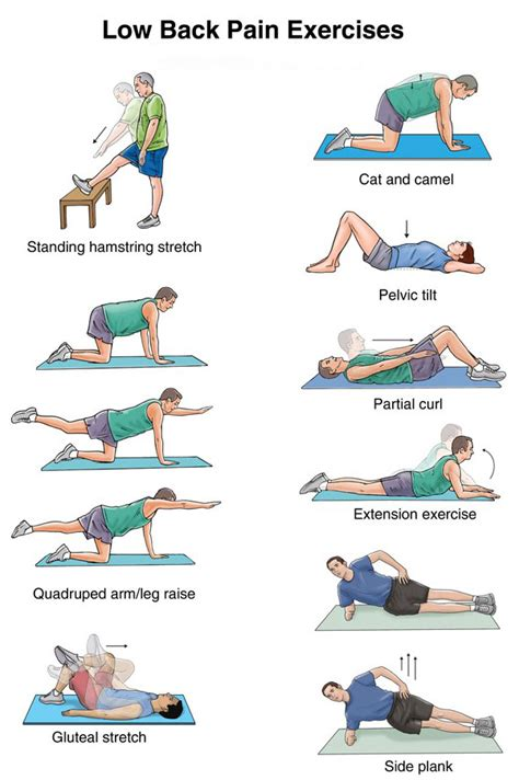 lower back exercises ease your best office chairs for lower back list for bad backs 2016
