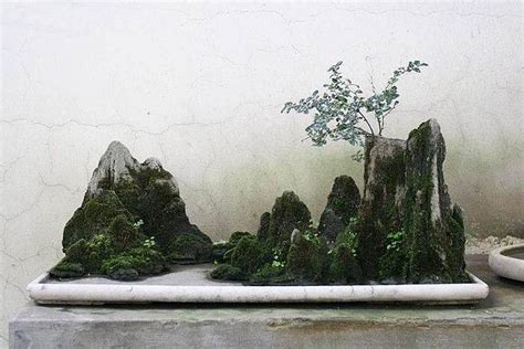 sichuan garden rock bonsai landscape in sichuan province 3 saikei and penjing landscapes and aquascaping