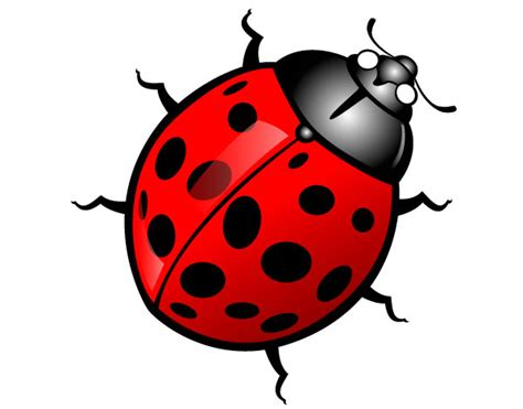 Free Cute Insect Clipart | Free Images at Clker.com ... Insect Drawings Clip Art