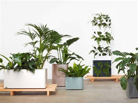 Best Indoor Planters by 17 Best Ideas About Indoor Plant Stands On