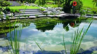 Natural Pool by No Chlorine Next Generation Of Natural Pools 14 Pics