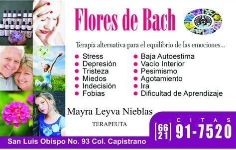 imagenes de flores de bach flores de bach en hermosillo tel 233 fono y m 225 s info