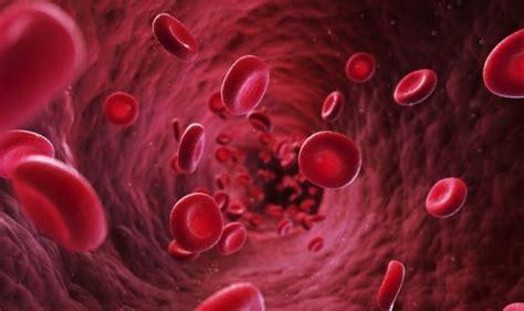 i vasi sanguigni creati vasi sanguigni artificiali grazie a stante 3d